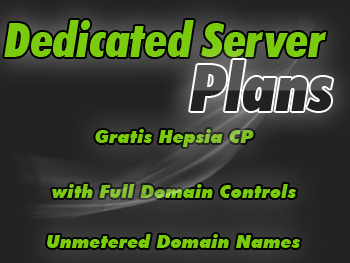 Economical dedicated server hosting account
